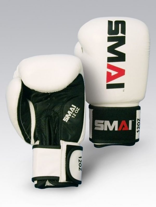 Pro Fighter Boxing Gloves